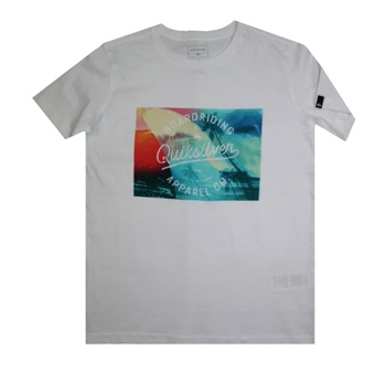 Quiksilver Youth Boys  Fin Paradise S/S Tee - White