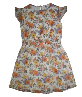 Here + There Germany Girls Chiffon Daisy Print Dress - Multi