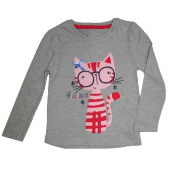 Young Dimension Girls Purfect Kitty L/S - Grey
